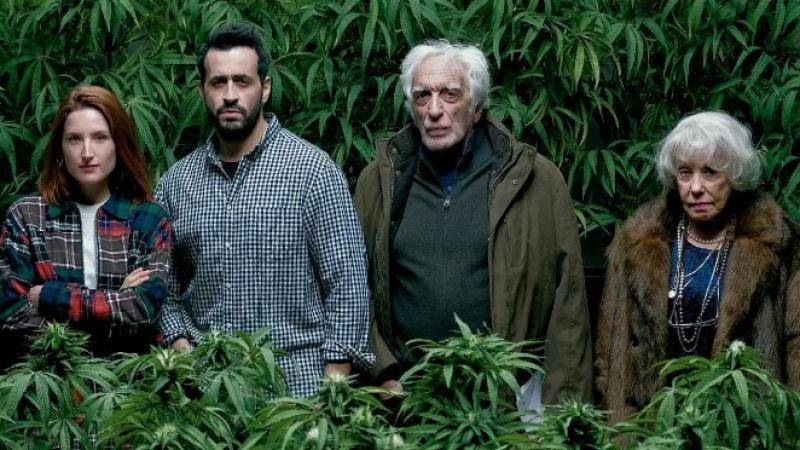 Family Business (serie): de la carnicería a la producción y venta de marihuana